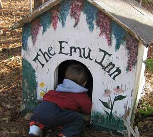 Little boy crawling into a dog kennel
