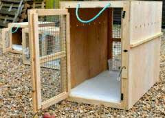 Wooden dog crate with mesh door at either end