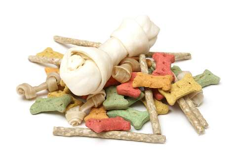 Lots of different dog treats laid out on a white background