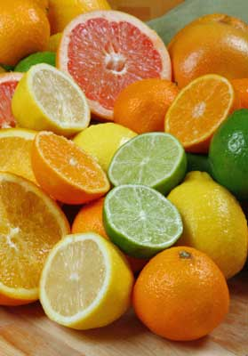Citrus fruits are a natural flea control for your dog