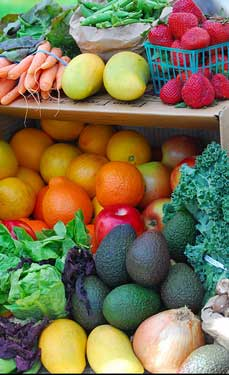 Delicious, colorful, fresh fruit and vegetables, grown without using pesticides, are used to prepare organic dog food