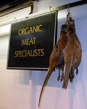 Organic dog food, brace of pheasants hanging