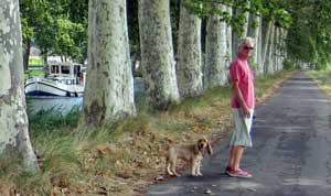 Hubby and Max walking along the Canal du Midi