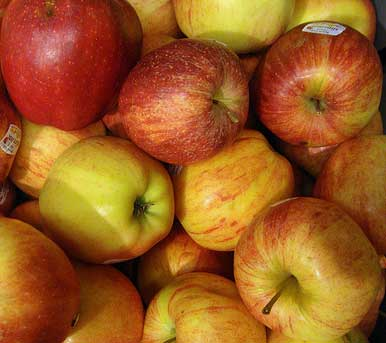 Red and yellow eating apples