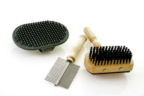 Essential dog grooming tools, a slicker brush, comb and rubber grooming glove for sheen.