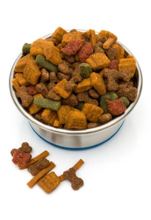 Large stainless steel bowl filled to the brim with colorful kibble