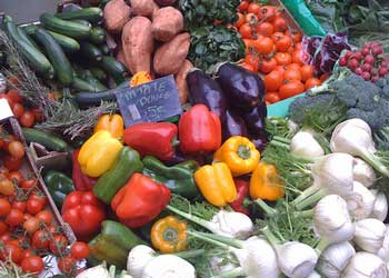 Beautifully fresh fruit and vegetables used to prepare organic dog food
