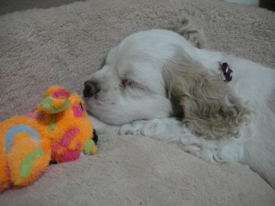 Sleeping... haha!